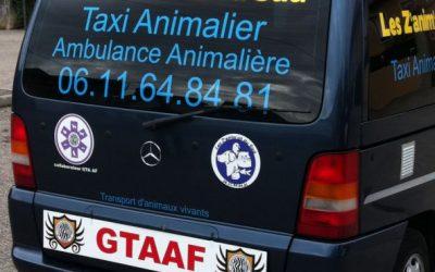 Transport d'animaux dans les Pyrénées Orientales