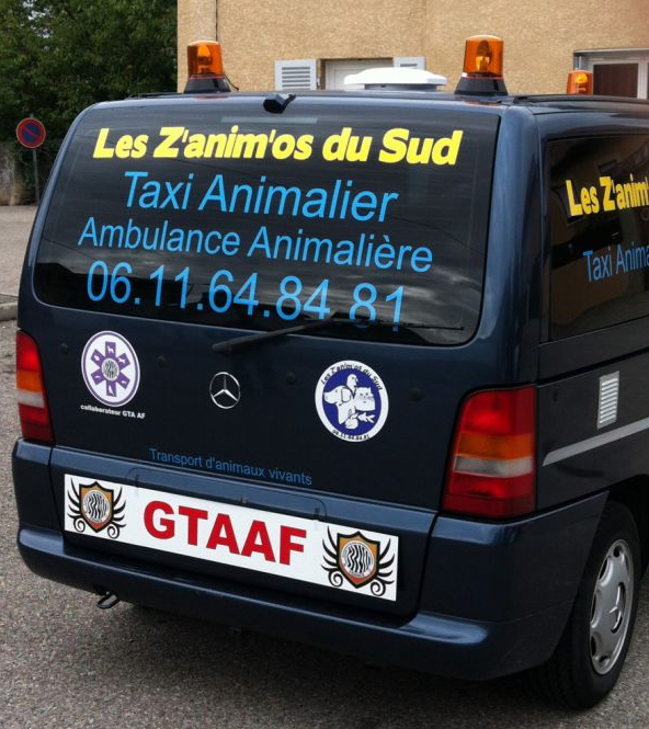 Transport d'animaux à Saleilles